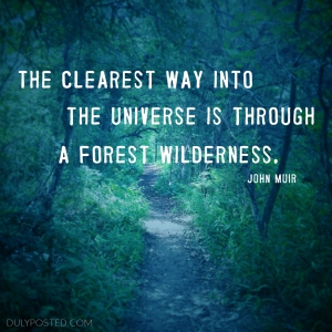 dulyposted_universe-forest-john-muir_quote
