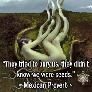 Mexican-Proverb112214