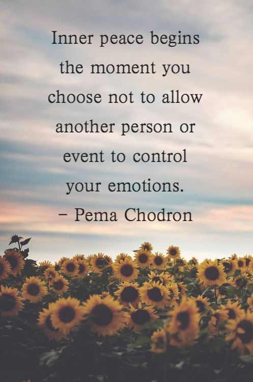 inner-peace-begins-the-moment-you-choose-not-to-allow-another-person-or-event-to-control-y